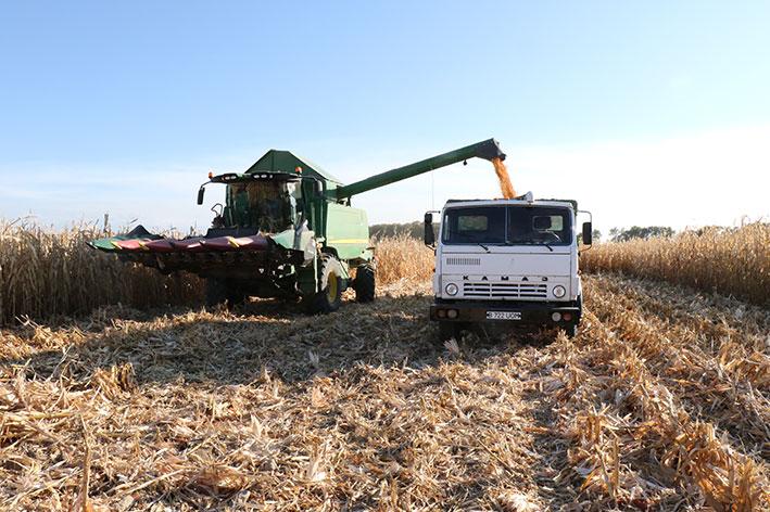 Больше землю удобряй – будет выше урожай!
